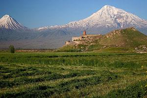 поиск биологической мамы в Армении